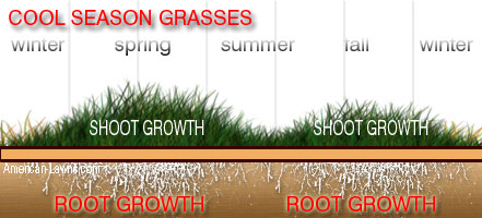 Cool Season Growth Pattern